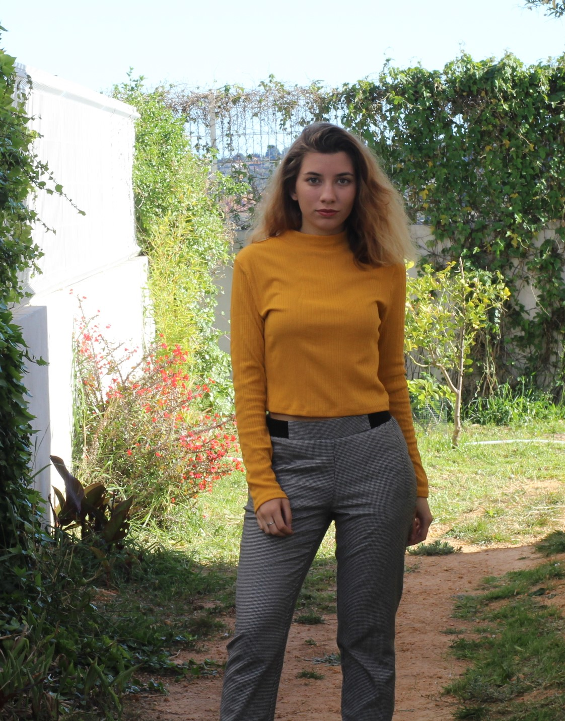 Mustard with gray